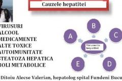de-ce-faci-hepatita