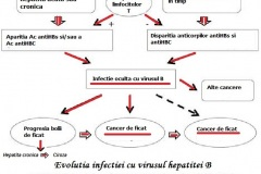 Evolutia-infectiti-cu-virusul-B