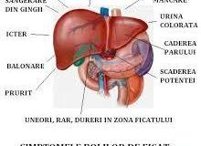 Boli-de-ficat-simptome